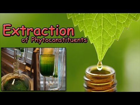 Extraction of Phytoconstituents