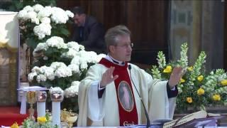 Omelia 23 Aprile 2017  Domenica della Divina Misericordia - Santa Messa ore 13:00