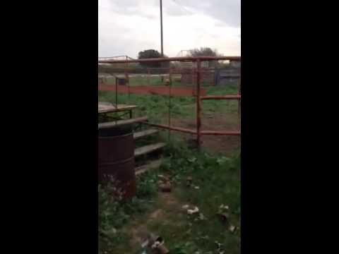 BRJ Video Blog 2: Work stations
