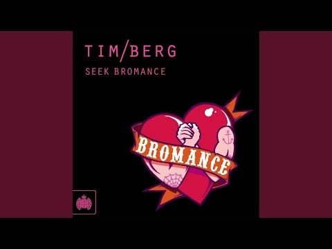 Seek Bromance (Avicii's Vocal Edit)