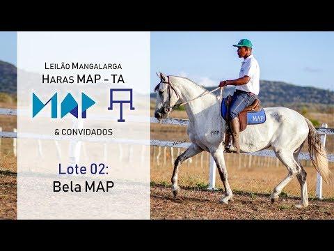 Bela MAP