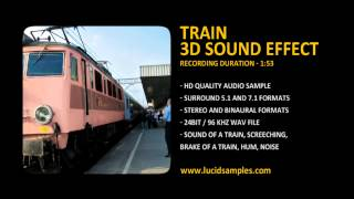 Train on the Railway Station 3D Sound Effect