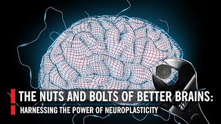 Nuts & Bolts of Better Brains: Harnessing the Power of Neuroscience