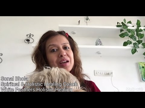 Sonal Bhola - Christmas Countdown Festival Ending @ White Feathers Holistic Healing