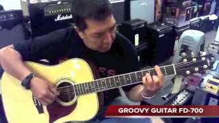 Groovy Guitar Model :FD-700