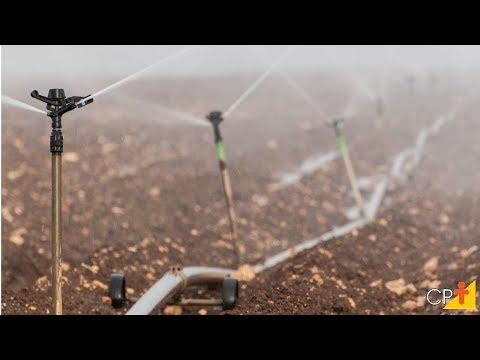 Clique e veja o vídeo Curso Projeto de Irrigação por Aspersão - Número de Linhas Laterais - Curso CPT