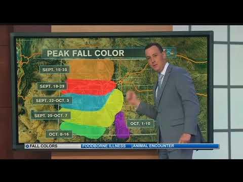 Colorado Peak Fall Colors