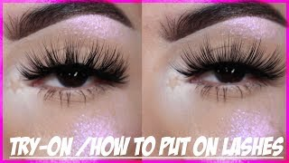 TRY-ON/HOW TO PUT ON LASHES | Rocio Ceja
