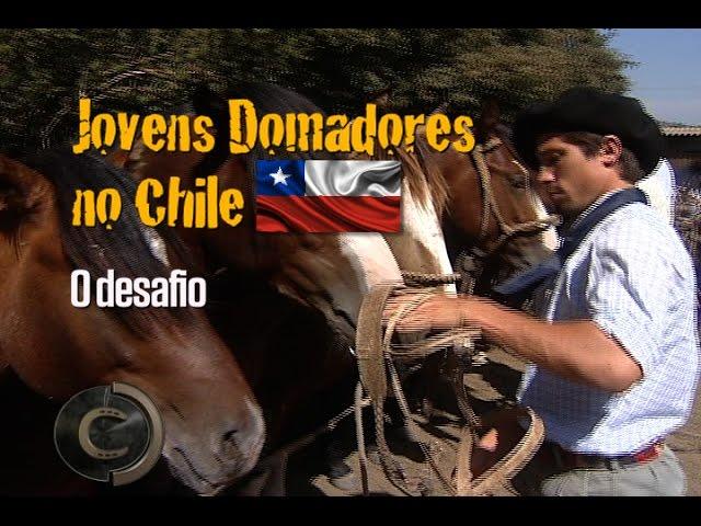 Eles abriram mão das férias escolares para domar no Chile.
