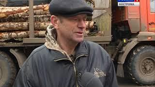 На трассе Кострома-Шарья перевернулся и загорелся лесовоз