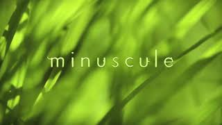 MINUSCULE...New Episode