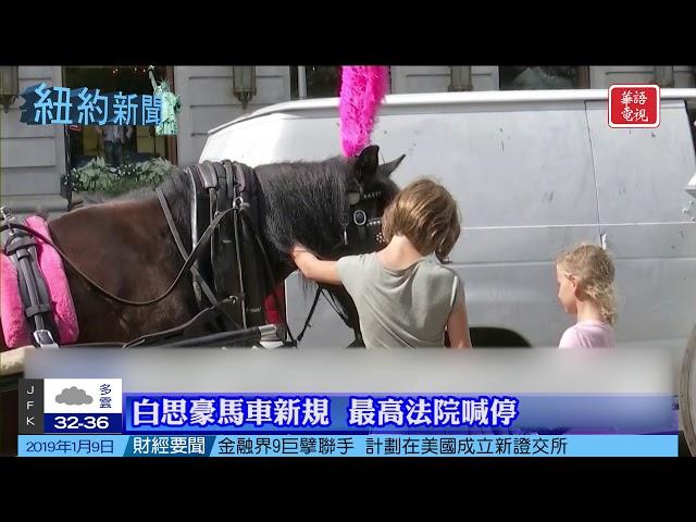 華語電視 紐約新聞 01/09/2019