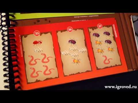 Деловые жуки. Обзор настольной игры-головоломки от Игроведа.