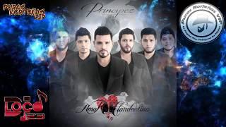 Principez De La Musica Norteña - Amor Clandestino | 2019 *