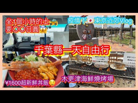 【日本旅遊】東京疫情近郊自由行vlog 千葉木更津不只有outlet 超抵食海鮮丼飯 BBQ燒烤場 坐的士價格 日落 Japan Tokyo Kisarazu Seafood