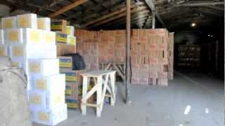 подпольный цех по производству масло ( г Шымкент )