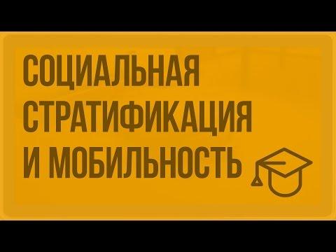 Социальная стратификация и социальная мобильность. Видеоурок по обществознанию 11 класс