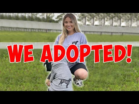 WE ADOPTED A RESCUE PUPPY! *Cute Animals*