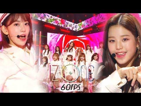 60FPS 1080P | IZ*ONE - La Vie en Rose, 아이즈원 - 라비앙로즈 Show Music Core 20181103