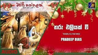 Tharu Eliyak Wee - Pradeep Dias  Official Audio   MEntertainments Thumbnail