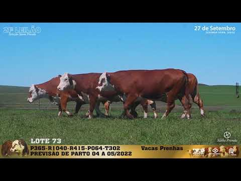 LOTE 073