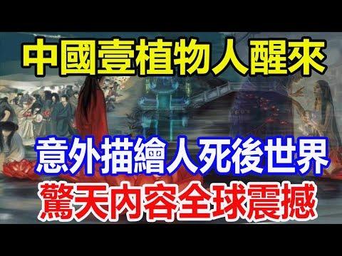 中國壹植物人醒來,意外描繪人死後世界,驚天內容全球震撼!