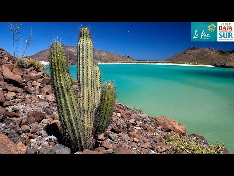 Baja California Sur - A journey through Mexico