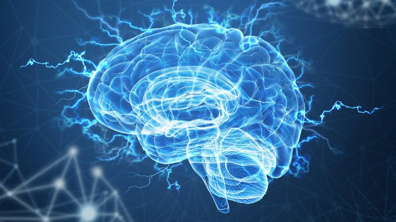 5 Makanan Nootropika untuk Meningkatkan Kekuatan Otak Secara Alami