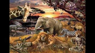 Безумный Зоолог опровергает некоторые \