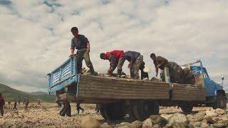 Protecting livelihoods in North Korea