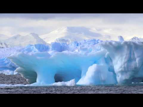 Antarctic Tour-Highlights-2