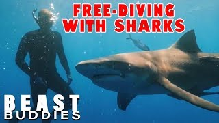 Young Couple Free-Dive With Sharks | BEAST BUDDIES