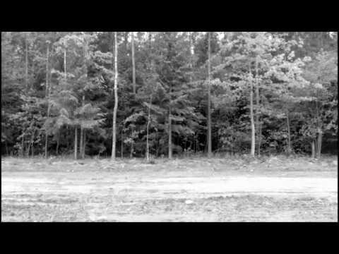 Камера в лесу засняла НЕЧТО!!! Смотреть без перемотки!!! УЖАС!!!