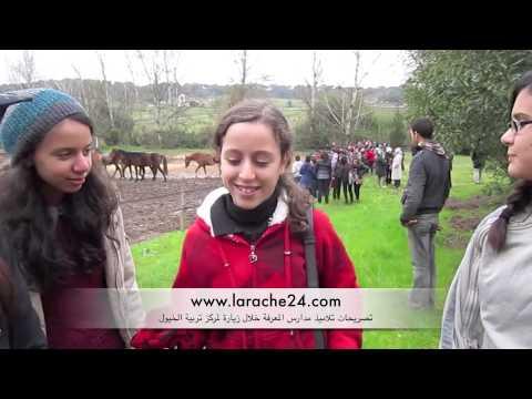 تصريحات تلاميذ مدارس المعرفة خلال زيارة لمركز تربية الخيول