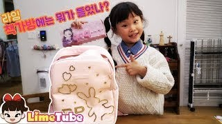 라임이의 책가방 안에 뭐가 있을까? 초등학생 책가방 공…