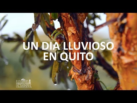 Un día Lluvioso en Quito Capital del Ecuador - La Ruta de Enrique - Parte 1