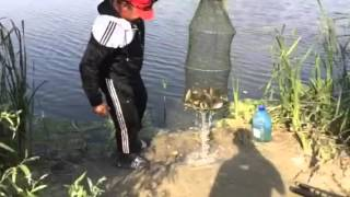 Рыбалка на красноперку (Дунай)(Рыбалка на красноперку. Дунай, г. Вилково - Гостиный Двор