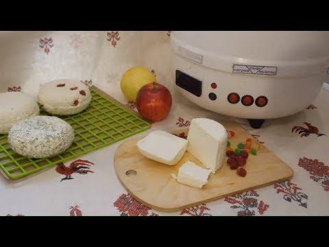 Творог из молока с ферментом / Как сделать творог в домашних условиях / Сыроварня Тремасова