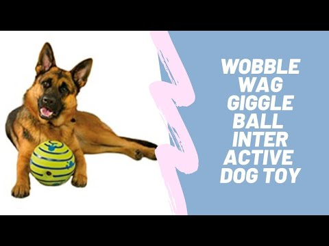 wobble-wag-giggle-ball---interactive-dog-toy