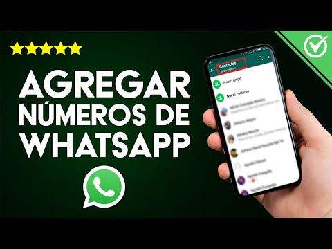 Cómo Añadir y Agregar Números de WhatsApp y así Tener Muchos Contactos