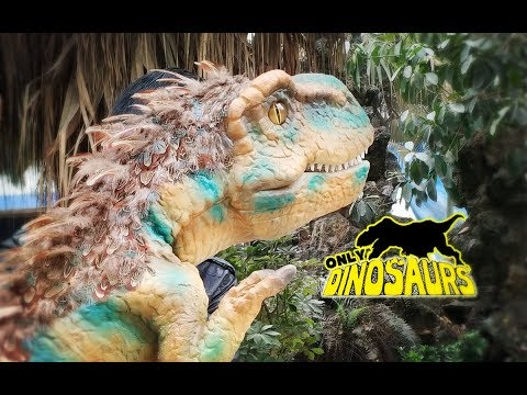DP-14 Feathered Baby T rex Puppet