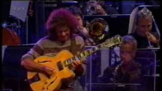 Pat Metheny - Minuano
