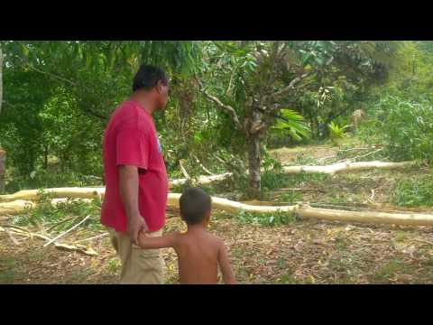 Building Canoe House in Micronesia