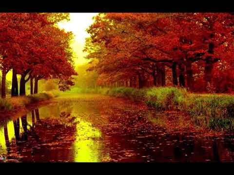Yves Montand - Les Feuilles Mortes ( Autumn Leaves )