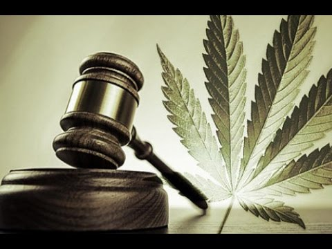 Victory For Canadian Cannabis Growers In Allard vs Queen Case: PFT Live with Jeremiah Vandermeer