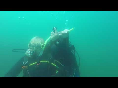 Public Safety Rescue Diver