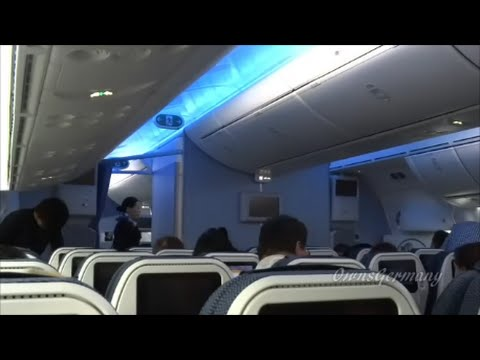 ANA 787 Dreamliner Economy Class Flight Experience Seattle - Narita, Japan