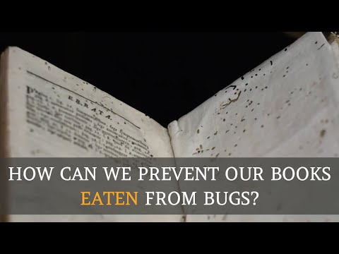 How Can We Prevent Our Books Eaten From Bugs