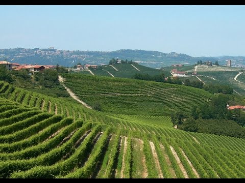 Langhe-Roero in Piemonte: Italy's best kept secret