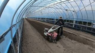 농번기 농촌 브이로그 추석 선물용 멜론 재배지 밭 만들…